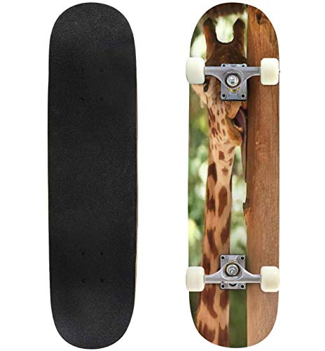 Buy Classic Concave Skateboard A Funny Giraffe Licking a Tree Longboard Maple Deck Extreme Sports an...