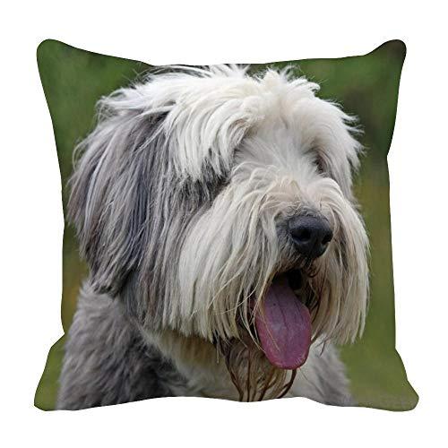 Perfecone - Funda de almohada de algodón para el hogar, diseño de carlino y perro con funda de almohada de 80 x 80 cm