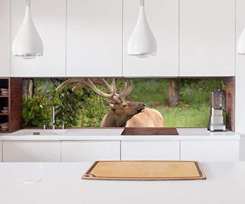 Aufkleber Küchenrückwand Hirsch Tier Wald Geweih Elch Baum Natur Kopf Kitchen Küche Folie Fliesen Möbelfolie Spritzschutz 22?1375, Höhe x Länge:70cm x 150cm
