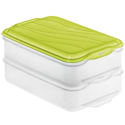 Rotho Rondo 2-teilige Vorratsdose 2x 1,35l mit Deckel, Kunststoff (PP) BPA-frei, grün, 2 x 1,35l (23,5 x 15,5 x 11,0 cm)