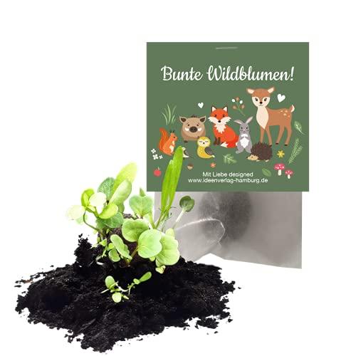 """10x \""""Waldtiere\"""" Samenbomben als Mitgebsel zum Kindergeburtstag / Geschenk / Seedbombs / Blumen / Partytüten / Mitgebseltüten / Geschenktüten / Give-aways / Geburtstag / Kinder / Saatkugeln"""
