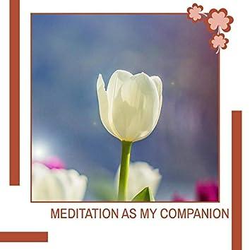 Meditation As My Companion