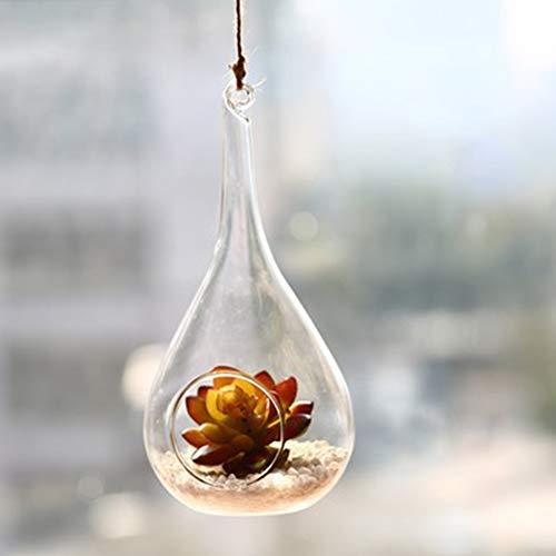 LanLan bloempot van glas om op te hangen, met decor gesimuleerd Ducculent