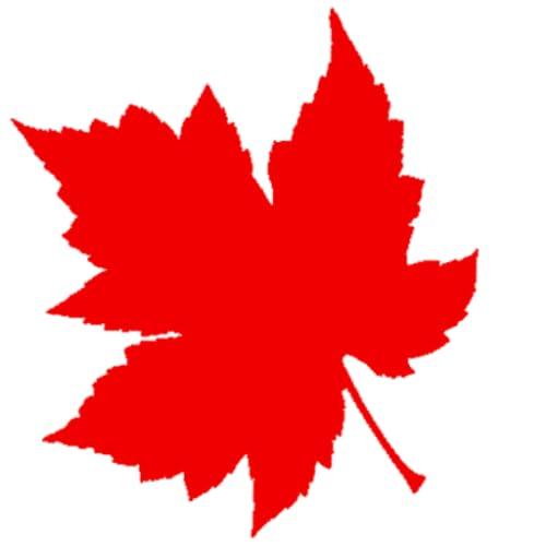 Canadian Offline News. 加拿大新闻 离线读