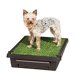 Dog Training Pads & Trays