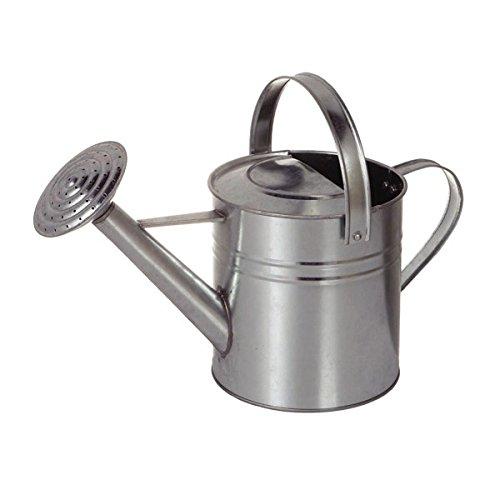 [ダルトン] Galvanized watering can K565-473 2.5L ガルバナイズ ジョウロ