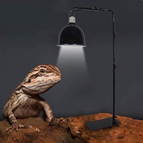 Mississ Reptile Lamp Stand, verstellbare Teleskop Metall Stehlampe Halterung/Heizung Lampenfassung für Sukkulenteidechse Schildkröte Schildkröte (Metall Eisen) chic