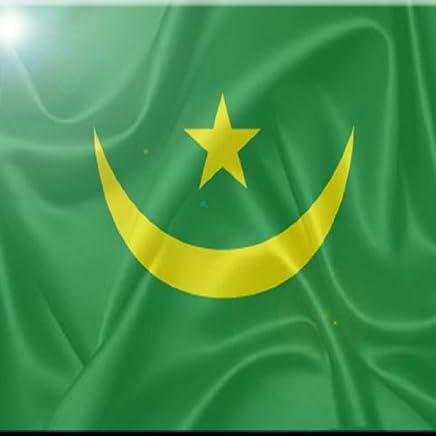 rikki knight bandera de Mauritania diseño arte baldosa cerámica, 4por 4-inch