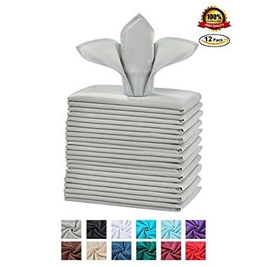 Cieltown Polyester Cloth Napkins 1-Dozen (17 x 17-Inch, silver)