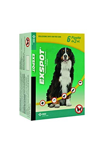 ExSpot 6 Pipette, 2 ml - MSD Animal Health