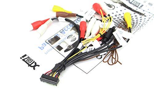 Xtenzi Cinch-Kabelbaum für Autoradio, kompatibel mit Pioneer AVIC AVH CDP1803 - XT91909
