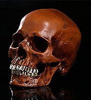 装飾品シミュレーション1:1人間の頭蓋骨モデル医療の頭蓋骨樹脂の頭蓋骨ハロウィーンの装飾ハロウィーンの頭蓋骨収集可能なハロウィーンのパーティーの装飾