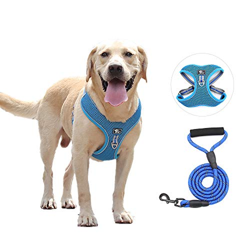 Dog Harness and Leash Set, No-Pull Air Mesh Dog Harness with Leash Clips, Adjustable Soft Padded Dog Vest, Reflective No-Choke Safety Harness with Easy Control Handle for Large Dogs (XL, Blue)