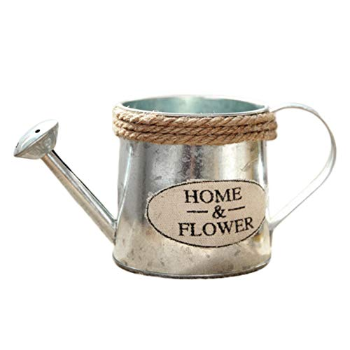 yahede Planters Vases Vintage Metal Handicraft Watering Cans Shaped Plant Flower Home Decor Succulents Plants Flowers Pot Bucket gorgeous