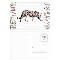 茶色の動物のチーター 公式ポストカードセットサンクスカード郵送側20個