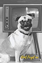 Don't Forget Me: Vintage Pug Dog and TV.Internet Password Logbook with alphabetical tabs.Personal Address of websites, usernames, passwords ... printed format.Size 6x9 inches