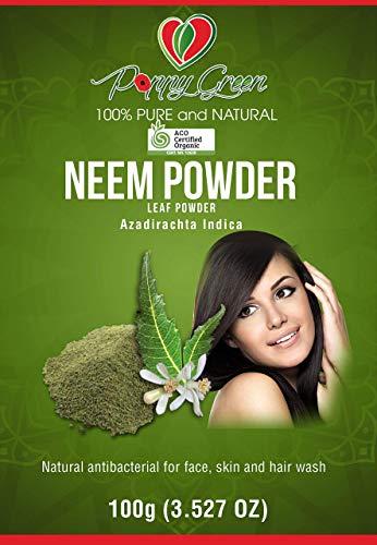 100% reines und natürliches Neem Azadirachta Indica Pulver 100g