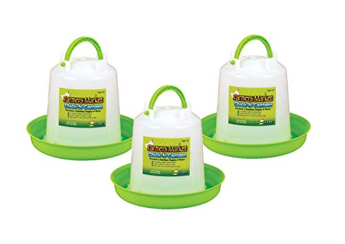 Ware Manufacturing 3 Pack of Chick-N-Canteen, Small Bird Waterer