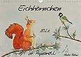 Eichhörnchen in Aquarell (Wandkalender 2021 DIN A4 quer)