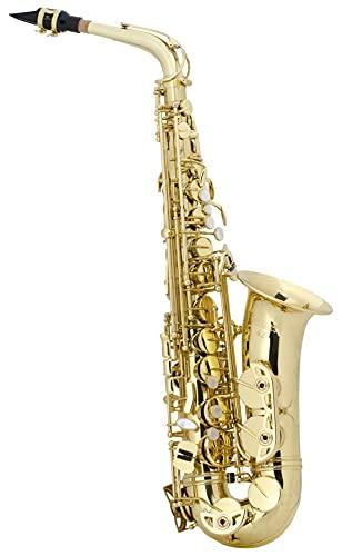 Selmer AS42 Alto Saxophone Outfit