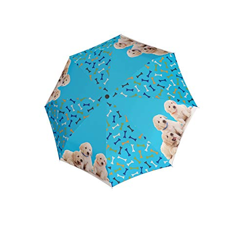 doppler Paraguas Infantil Dogs Youth Automatic - con Motivo Dulce - Muy Ligero - Automatic - Dogs Blue