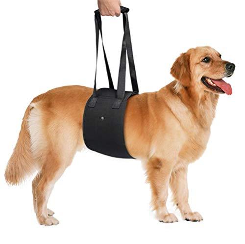 Hondenlus, draagbaar, comfortabel met handvat, duurzaam, eenvoudig te dragen, hondenspeelgoed, trapstijgen, Aid Assist, honden, draagbaar, voor Husky, Labrador, Samoyed oudere honden