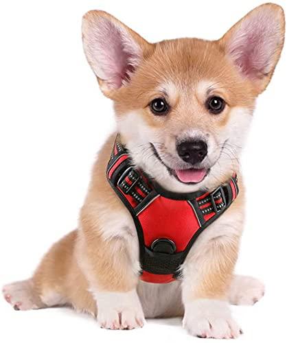 rabbitgoo Arnés Perro Pequeño Color Rojo Arnés Antitirones Perros Chaleco Cómodo Mascotas Líneas Reflectores Mejor Seguridad en Noche Tamaño S Pequeño