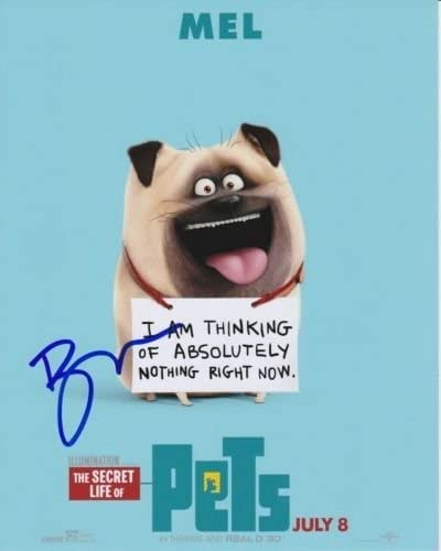 BOBBY MOYNIHAN signed autographed THE Max 52% OFF SECRETS Sale SALE% OFF p PETS OF LIFE MEL