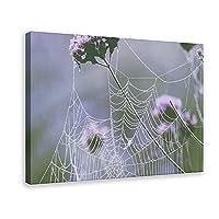 天然植物ポスタークモの巣と花キャンバスポスター壁アートの装飾家族の寝室の装飾のための写真の絵画を印刷するフレーム:24×36インチ(60×90cm)