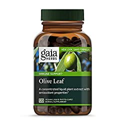 top 10 olive leaf extract Gaia Herb Olive Leaf, Vegan Liquid Capsules, 120 Capsules – Daily Support for the Immune System and Cardiovascular System…