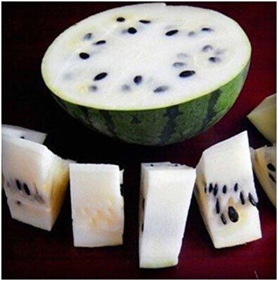 Mixtes rares Graines de pastèque chinois juteux fruits délicieux melon d'eau Plantes Bonsai pot pour jardin Décor 40 pcs/sac 11