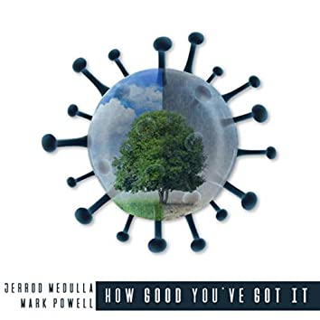 How Good You've Got It (feat. Jerrod Medulla)