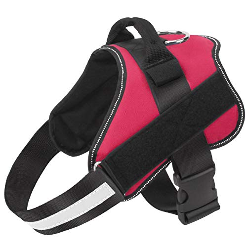 Easy to Put on Dog Harness