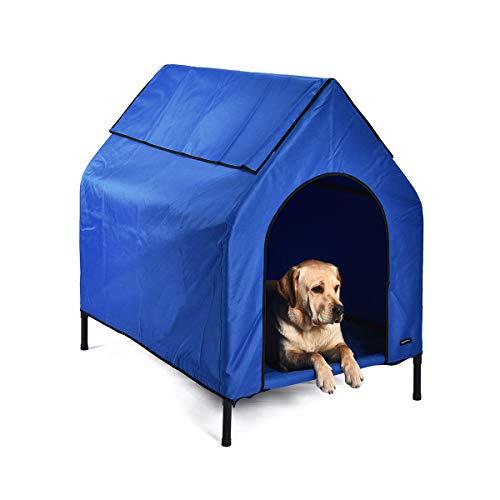 Amazon Basics - Caseta para mascotas, elevada, portátil, mediana, azul