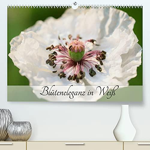 Blüteneleganz in Weiß (Premium-Kalender 2022 DIN A2 quer)