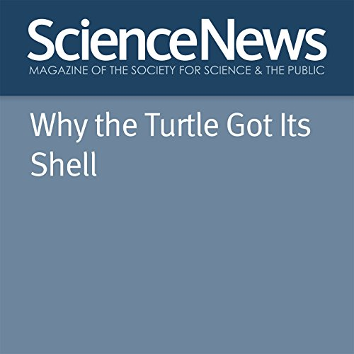 Why the Turtle Got Its Shell Titelbild