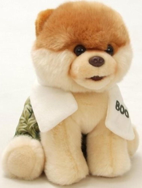 Gund Boo the World's Cutest Dog avec bain & serviette 22,9cm Jouet en peluche (Quantité limitée)