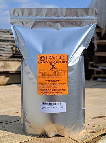 Food Plots Brassica Seed 5lbs plants 1 acre
