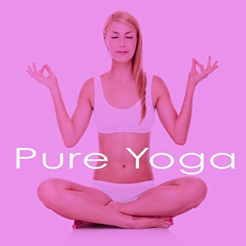 Massage Therapy Ensamble, Pure Massage Music & Meditation Zen Master