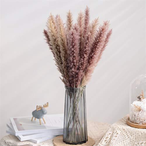 Natürliche getrocknete Blumen 15 stücke Dekoration Gras Großes echt getrocknete Reed Blume Blumenstrauß Home Pflanzen Dekoration Tisch Natura Haltbarkeit ist real (Color : As Chart)