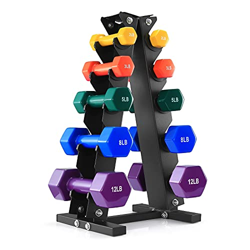 BRAVE HEART 2Lb 3Lb 5Lb 8Lb 12Lb Pair Vinyl Coated Hand Weights Dumbbells Set with Rack Stand, Dumbellsweights Set for Women and Men, Neoprene Dumbbells Weight Sets for Home Gym