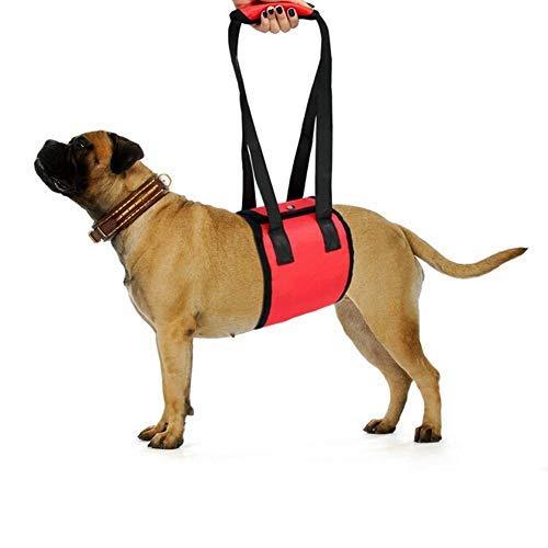Hunde Tragehilfe Hunde Gehhilfe Hundelift Stützgurt Rehabilitationsgurt Hund Rehabilitation Hundegeschirr Hilfsgeschirr mit weichen Griffriemen für verletzte behinderte Hunde zum Treppensteigen(S)