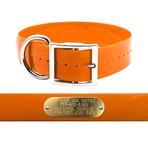"""Heavy Duty 1 1/2"""" D Ring Hunting Dog Name Collar with Free Brass ID Plate (Orange)"""