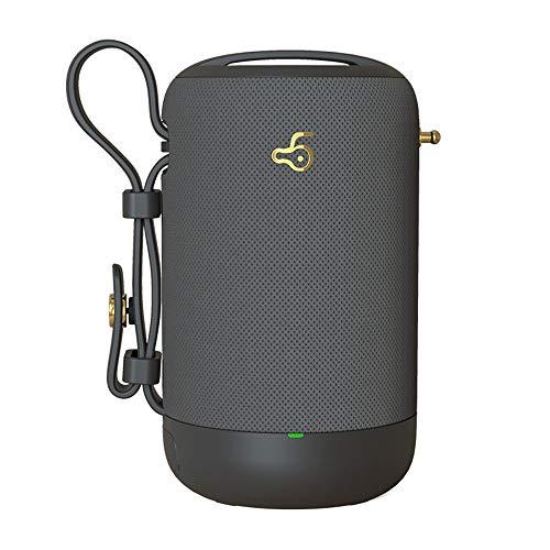 TL Wasserdichtes Bluetooth Lautsprecher, IPX7 wasserdicht, stoßfest bewegliche drahtlose Lautsprecher mit eingebauter Mic, für den Außenbereich Strand-Fahrrad-Party,Grau