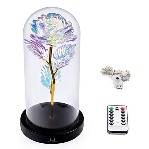 Louis Garden Beauty and The Beast Rose Kit, Colorful Gold Foil Rose and Led Light in Glass Dome on Black Wooden Base for Home Decor Holiday Party Wedding Anniversary (24K Colorful Rose)