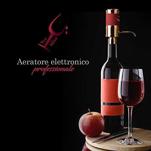 Pro Wine Versatore Elettrico PROFESSIONALE Vino, Aeratore e Ossigenatore,Conservante Per Vino, Decantatore Vino Rosso e Bianco, Versatore per aerazione Premium e beccuccio per Decanter,2 tubi inclusi