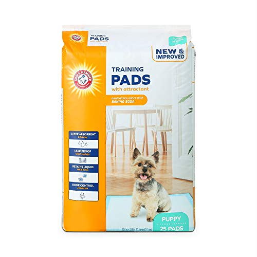Best what are the pee pads for dogs