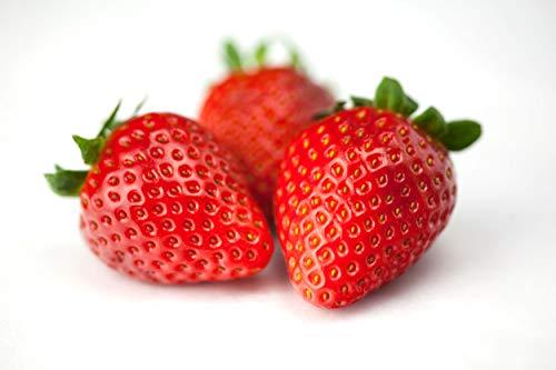 Erdbeersamen Sweetheart - mehrmals tragend - Kulturdauer 16 Wochen - Fragaria x ananassa