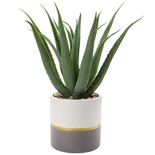 Briful Zimmerpflanze Sukkulente Künstliche Kunstpflanze Aloe, Agave und Tillandsie Badzimmer Deko, Höhe 30 cm, im Zementtopf