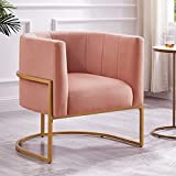 24KF Upholstered Living Room Chairs Modern Blush Textured Velvet Upholstered Accent Chair with Golden Metal Stand-Blush